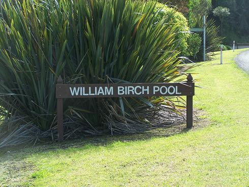 BirchPool.JPG