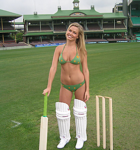 lara-cricket-762702.jpg