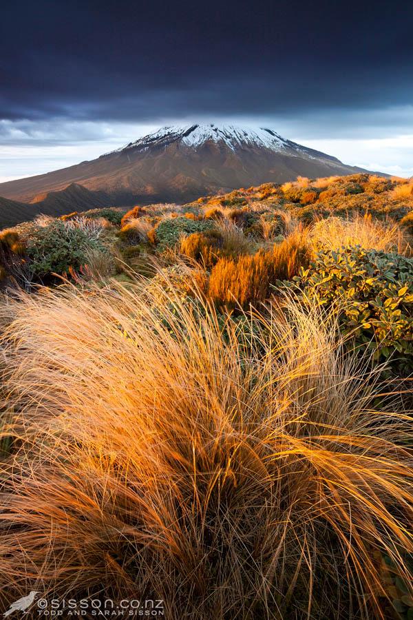 New Zealand Pictures | Sunrise Mt Egmont / Taranaki