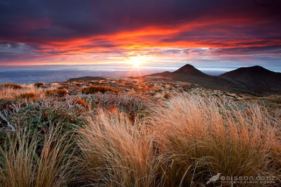 New Zealand Landscape Photos | Red Sunrise Pouakai Ridge Taranaki