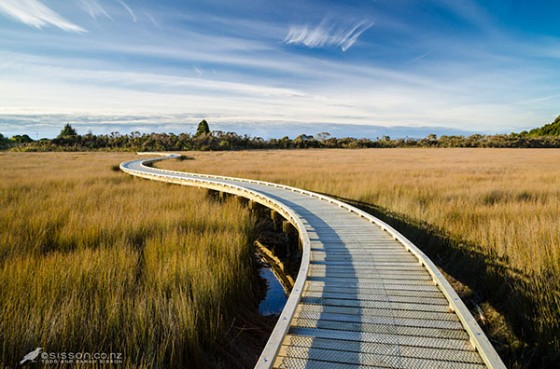 New Zealand photos | beautiul Boardwalk, Okarito Lagoon, West Coast NZ