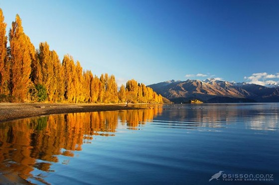 New Zealand photos | Lake Wanaka Autumn Reflections and ripples