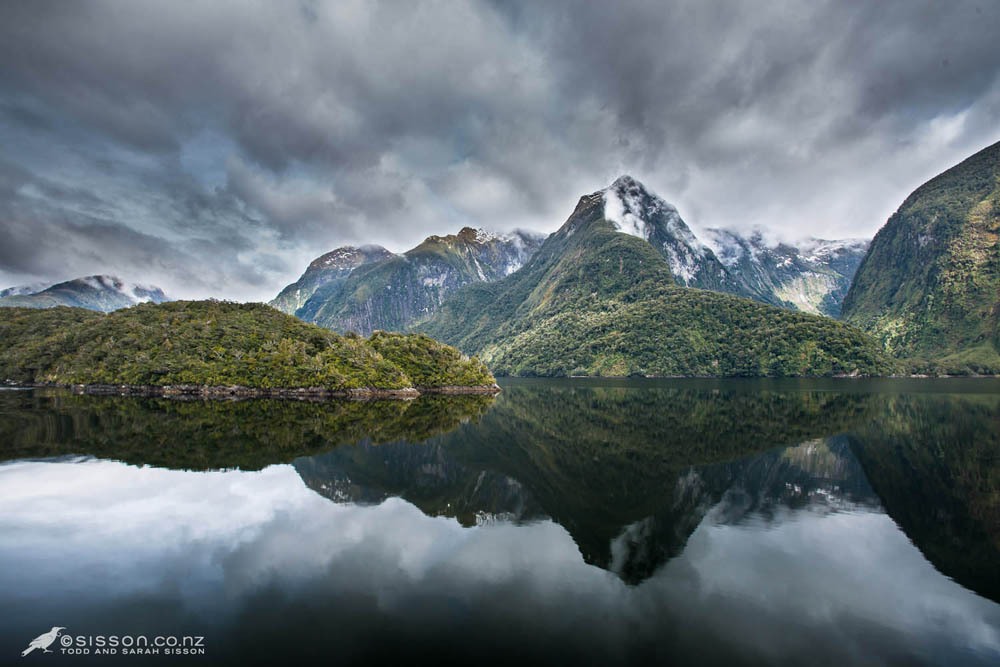 New zealand photos doubtful sound reflections fiordland for Nz landscape