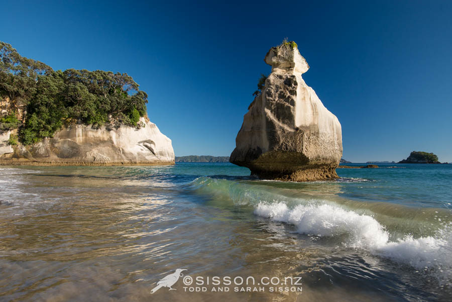 Mares Leg Cove, Cathedral Cove Walkway, Coromandel.  New Zealand Landscape Photography By Sarah Sisson