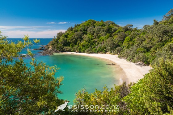 Summer time view of Whale Bay, Tutukaka Coast, North Island. New Zealand photography by Sarah Sisson.